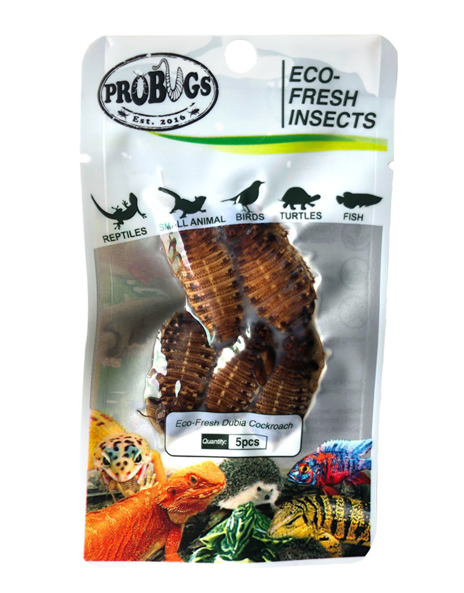Probugs Dubia Cockroach package