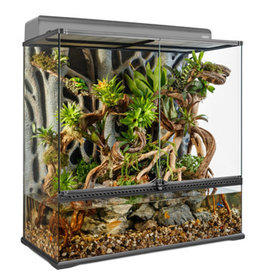 "EXO-TERRA Copy of Exo Terra Advanced Paludarium & Rainforest Terrarium - Medium - 60 x 45 x 90 cm (24"" x 18"" x 36"")"
