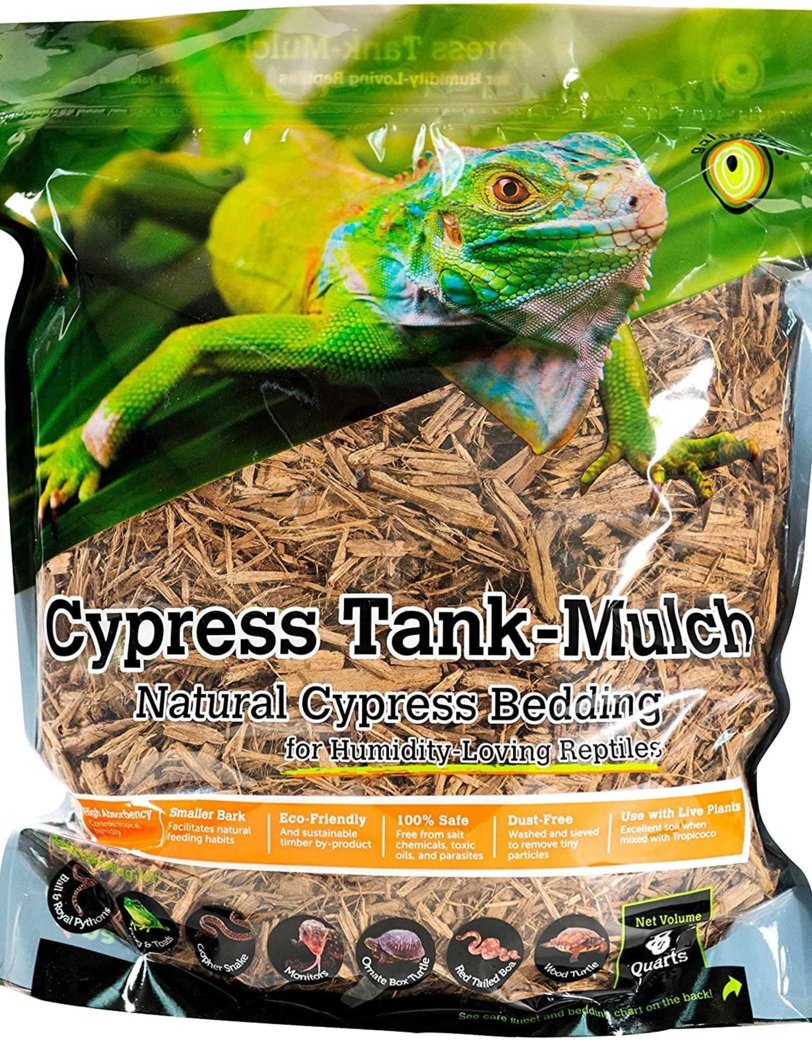 GALAPAGOS Cypress Tank Mulch Natural 8qt