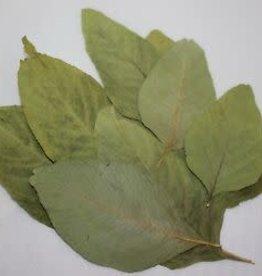 NewCal Pet Amaranth Leaves 10 Pk