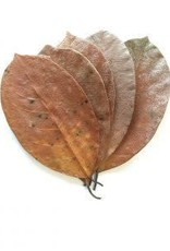 NewCal Pet Jackfruit Leaves