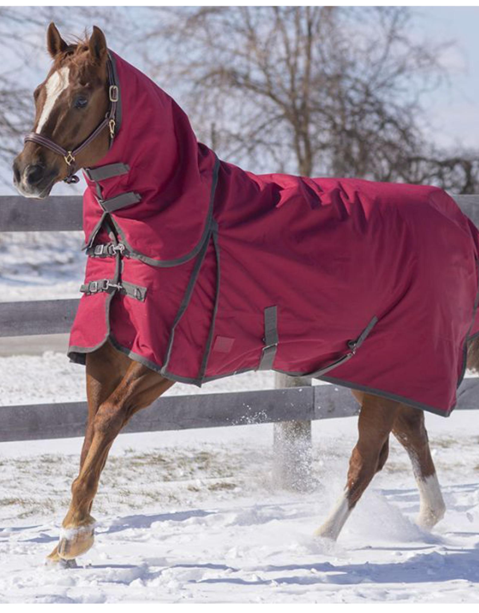 "Canadian Horsewear Canadian Horsewear 81""  Burgundy Diablo Storm 160gm"