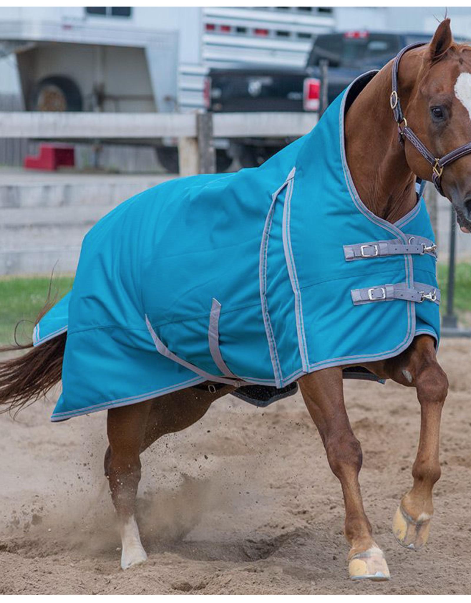 "Canadian Horsewear Canadian Horsewear 78"" Maxim Storm 160gm"
