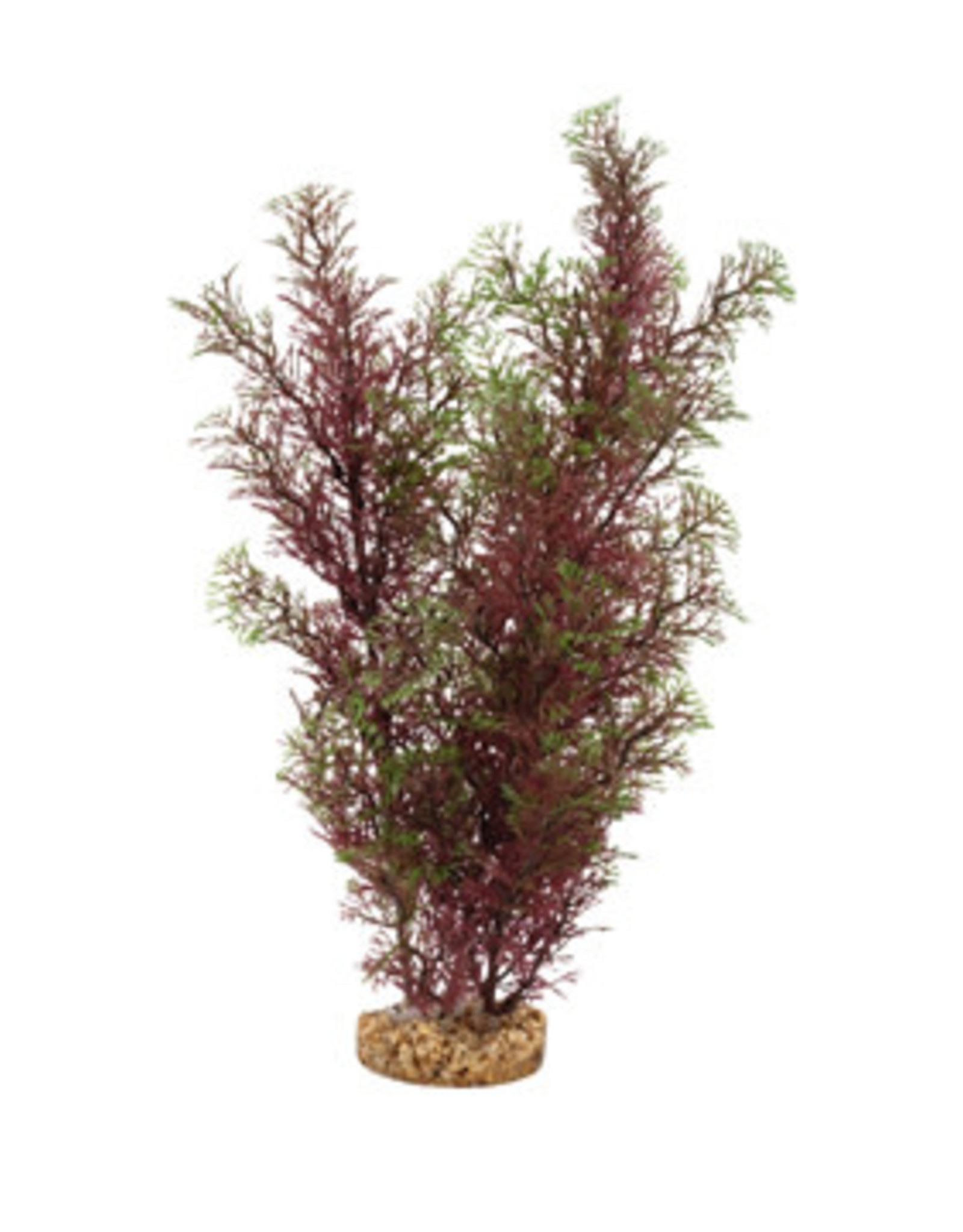 Fluval Fluval Aqualife Plant Scapes Red/Green Foxtail - 35.5 cm (14 in)