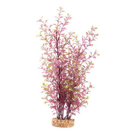 Fluval Fluval Aqualife Plant Scapes Red Ludwigia - 35.5 cm (14 in)