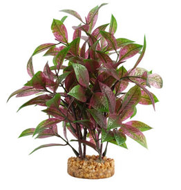 Fluval Fluval Aqualife Plant Scapes Broad Leaf Red Ludwigia - 25.5 cm (10 in)