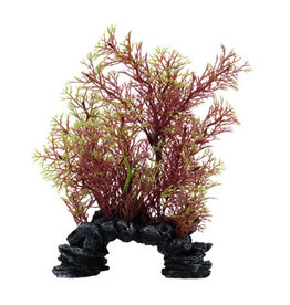 Fluval Fluval Aqualife Deco Scapes Red/Green Foxtail Mix - 15-20 cm (6-8 in)