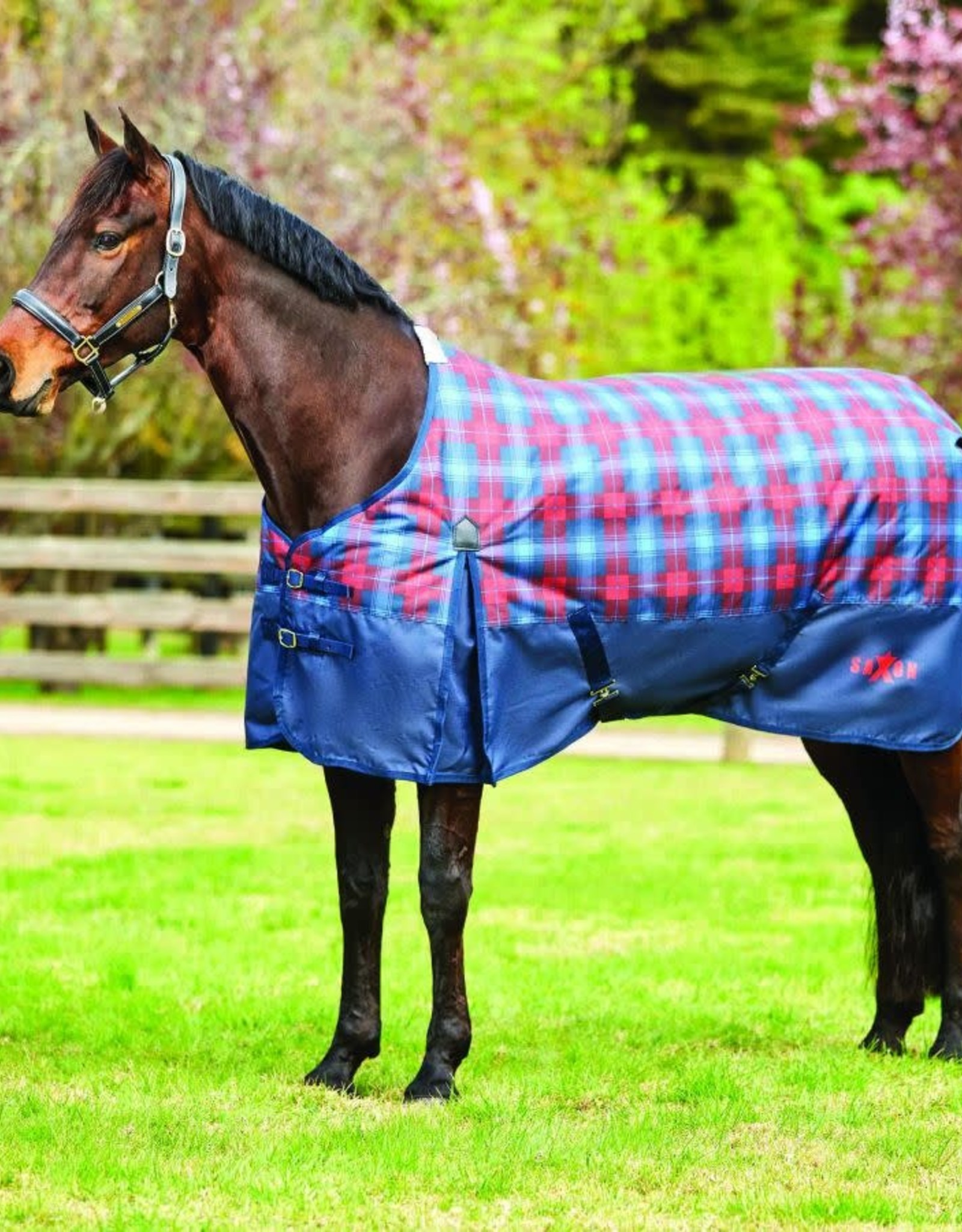 SAXON SAXON 1200D WITH GUSSET STANDARD NECK HEAVY II NAVY/RED/BLUE PLAID
