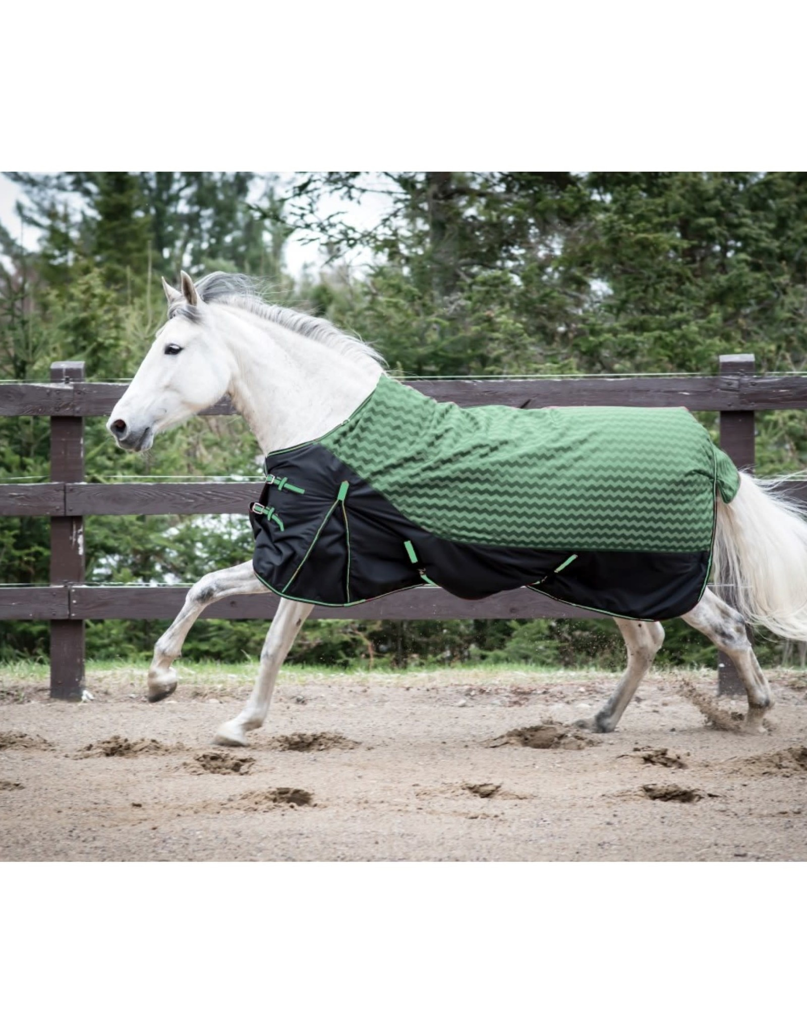 Century Horse Clothing CENTURY TIGER 600D WINTER TURNOUT