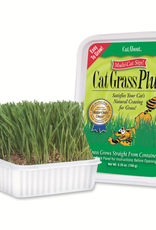 Miracle Care Miracle Care Cat A'Bout Cat Grass Plus - Multi Size 150 g