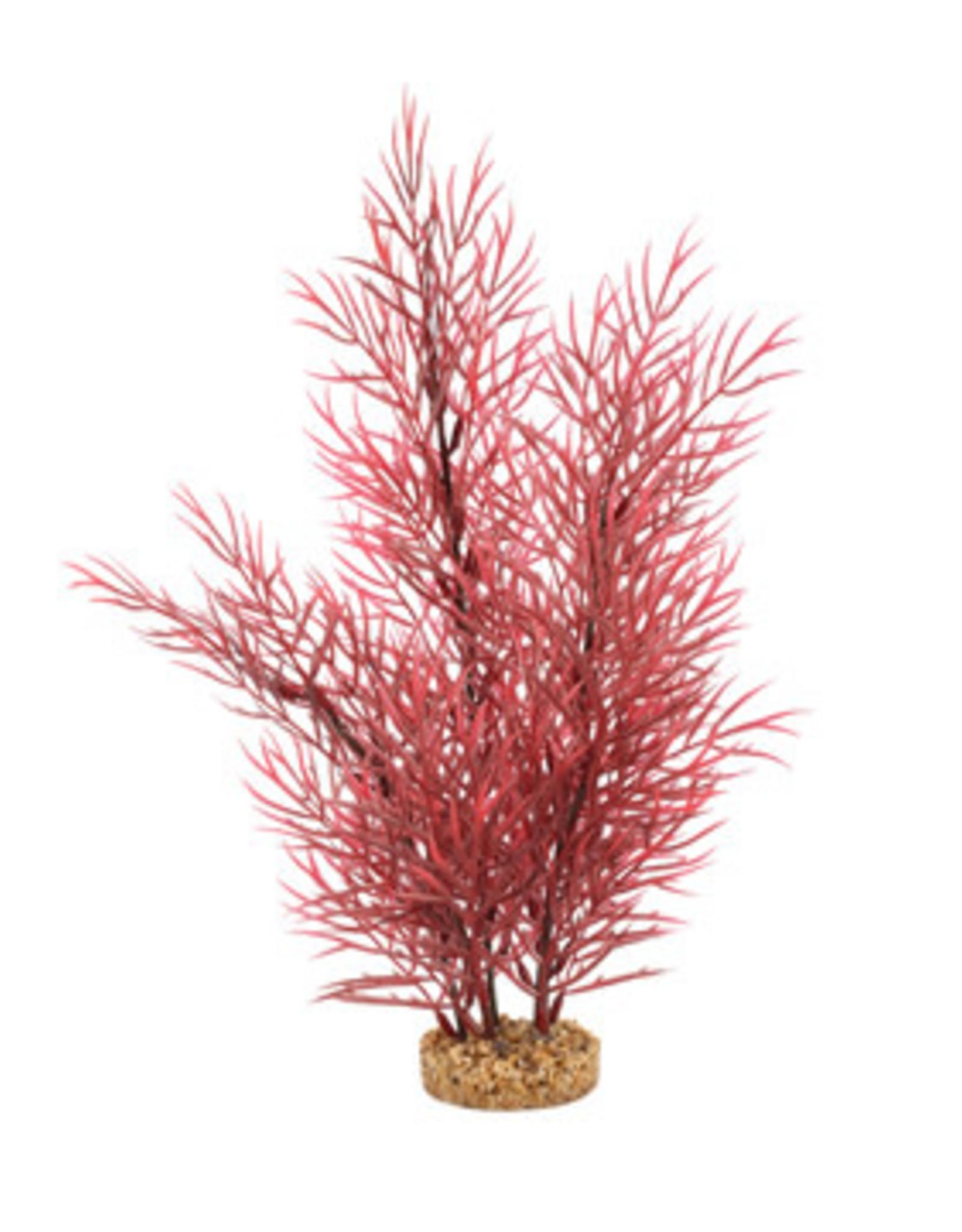 Fluval Fluval Aqualife Plant Scapes Scarlet Eichornea - 35.5 cm (14 in)