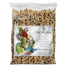 Tropican Tropican Lifetime Sticks for Parrots, 8 lbs