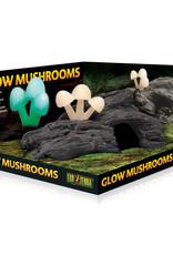 EXO-TERRA Exo Terra Glow Mushrooms
