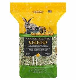 Sunseed SunSations Natural Alfalfa Hay 32oz