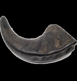 Open Range Water Buffalo Horn