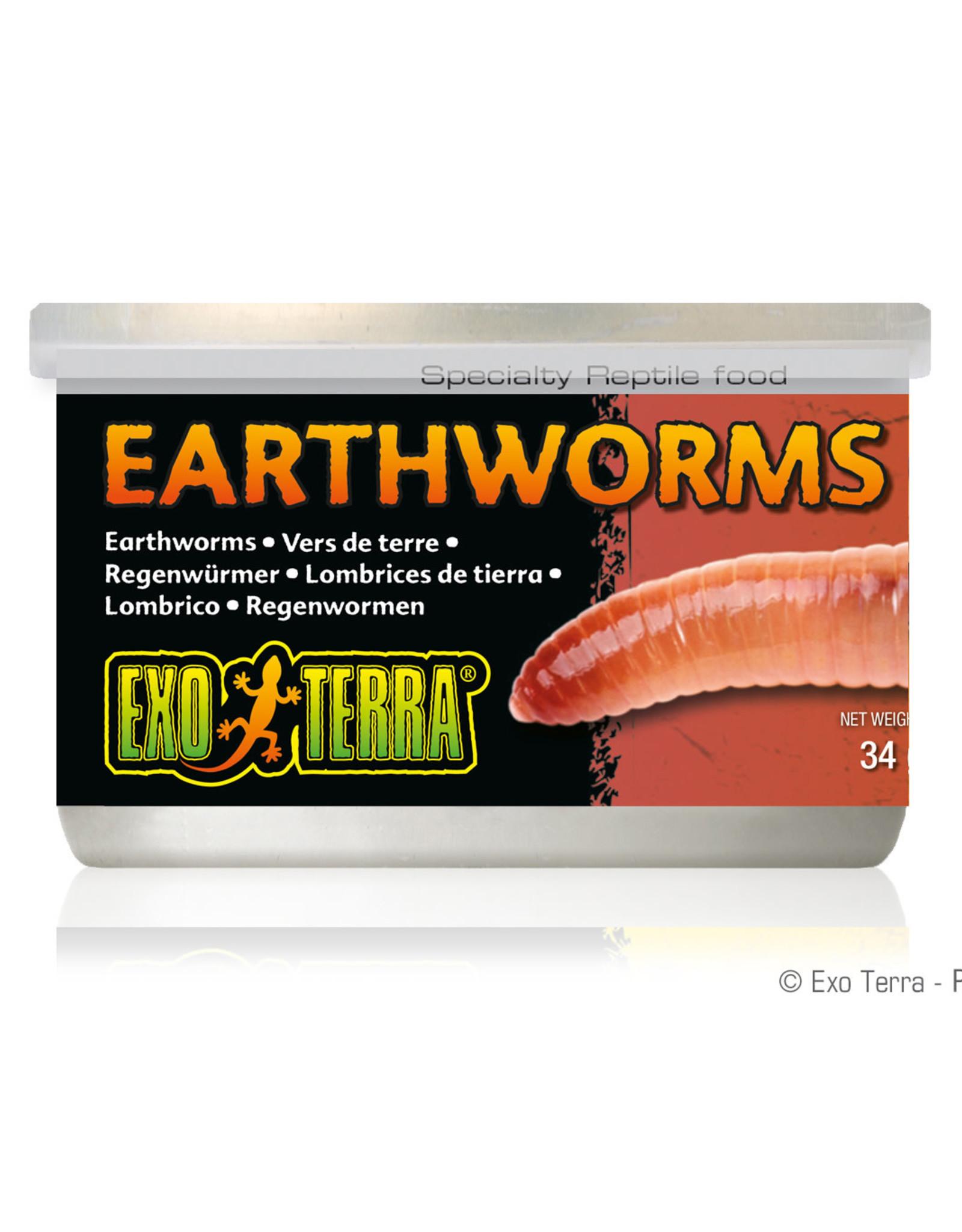 EXO-TERRA Exo Terra Canned Earthworms - 34 g (1.2 oz)