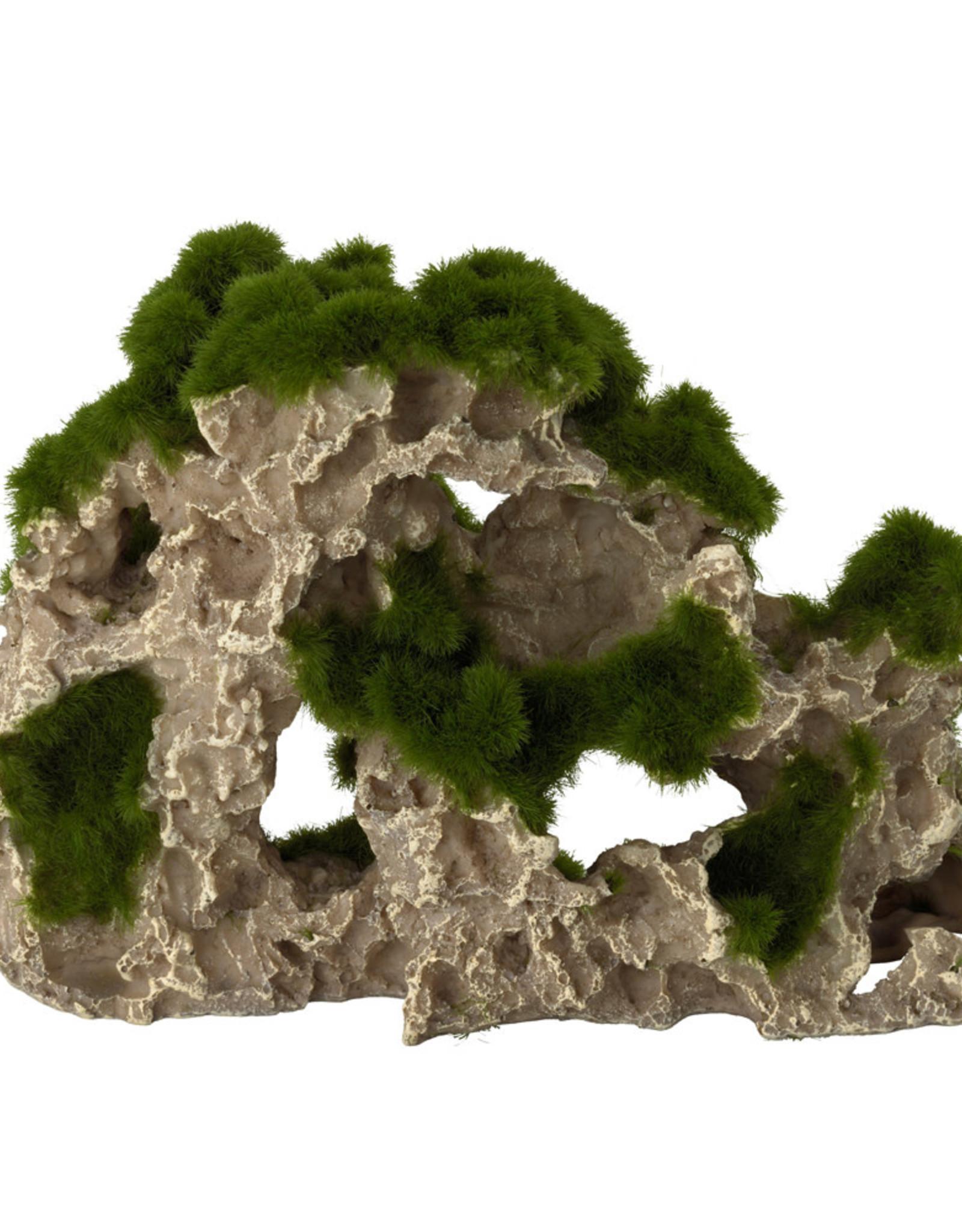 Aqua Della Aqua Della - Moss Rock - Medium