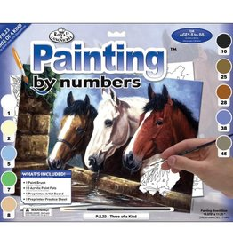 Royal & Langnickel Paint by Number Kit - Three of a Kind