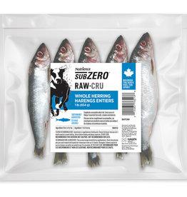 NUTRIENCE Nutrience Subzero Raw Bones for Dogs - Whole Herring - 454 g (1 lb)