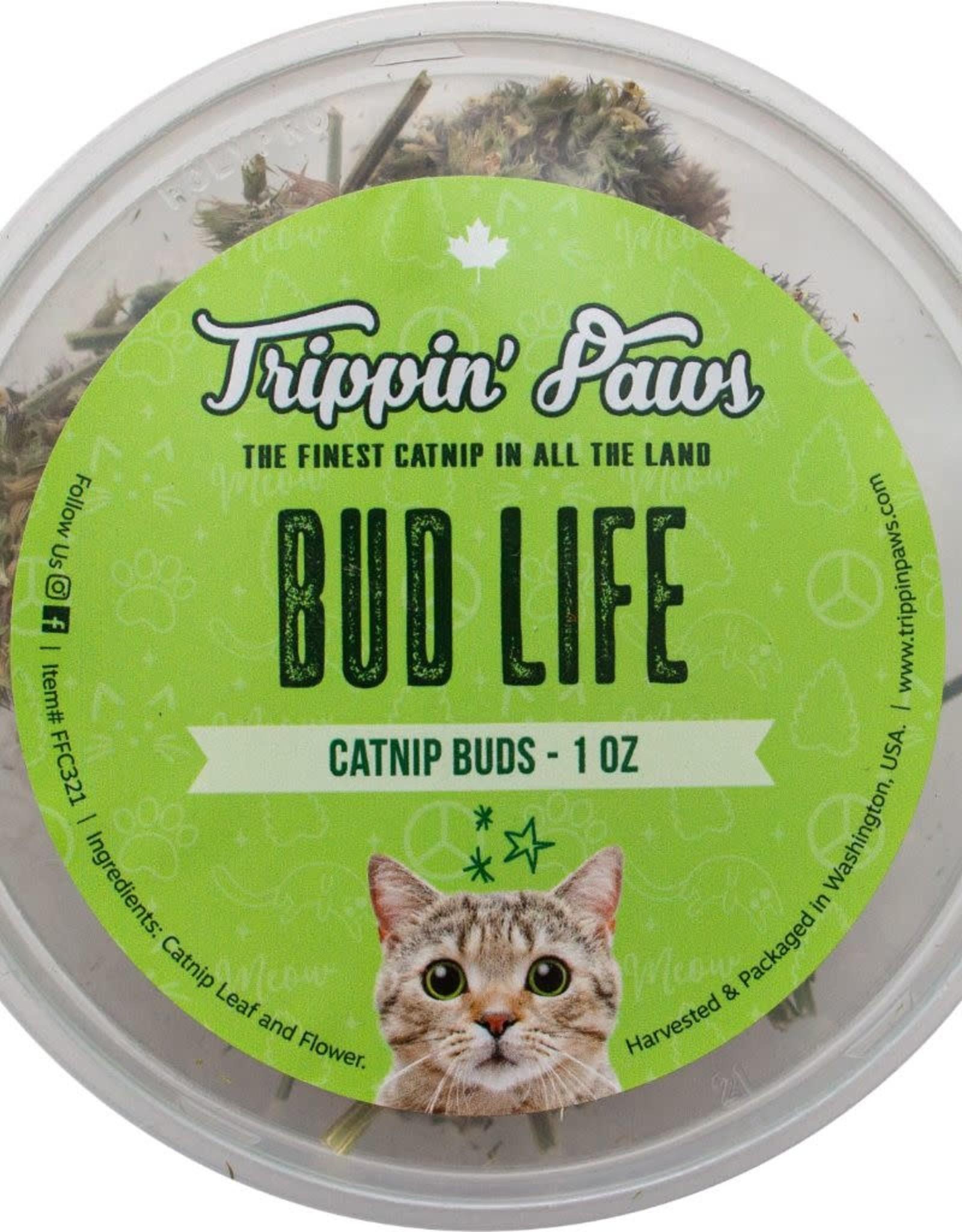 Trippin Paws Bud Life Tub 1 OZ | Catnip