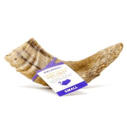 Icelandic Lamb Horn Dog Treat Small