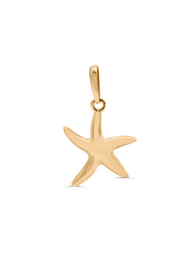 Pendentif étoile de mer 10k jaune