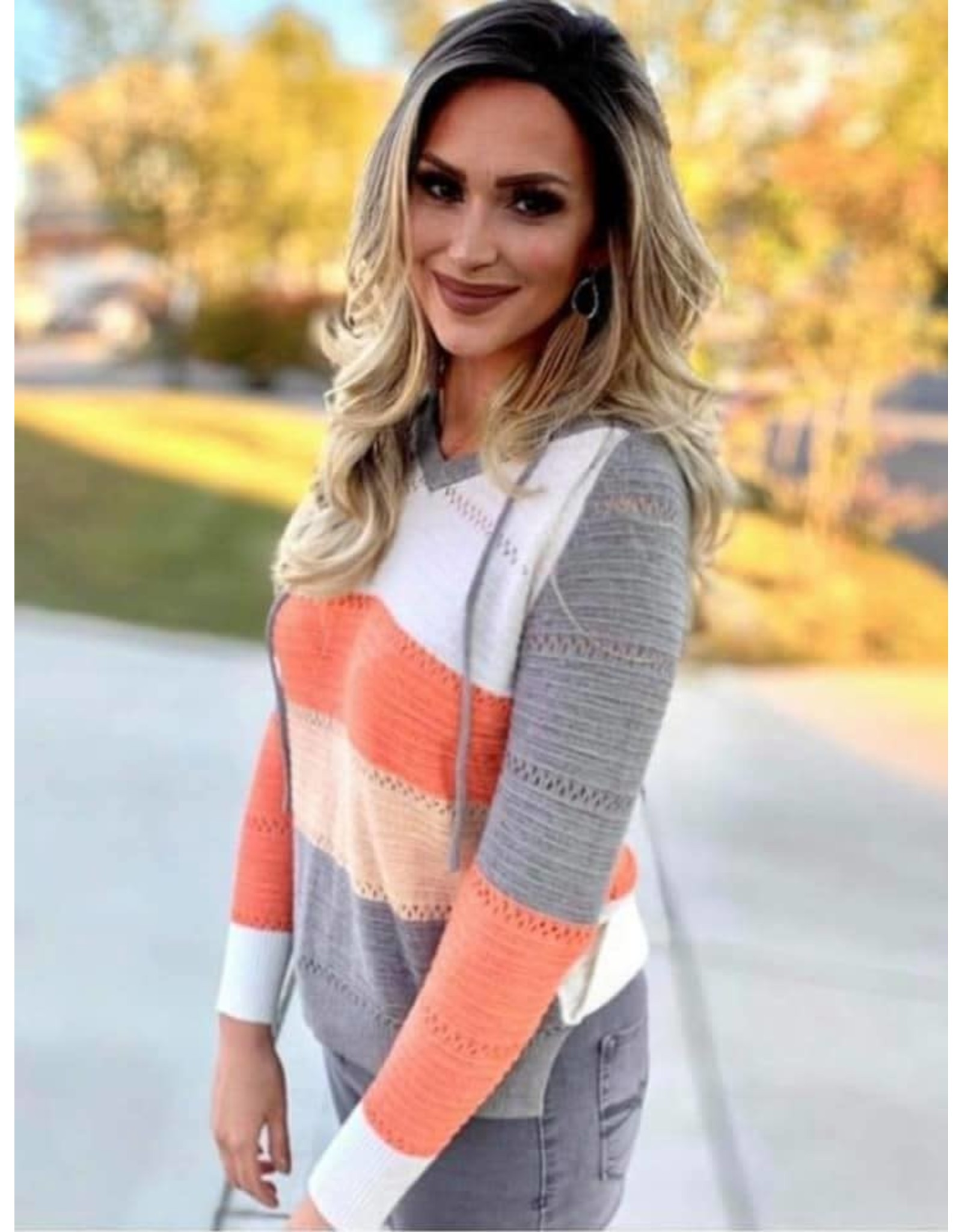 Kelly Hooded Sweater
