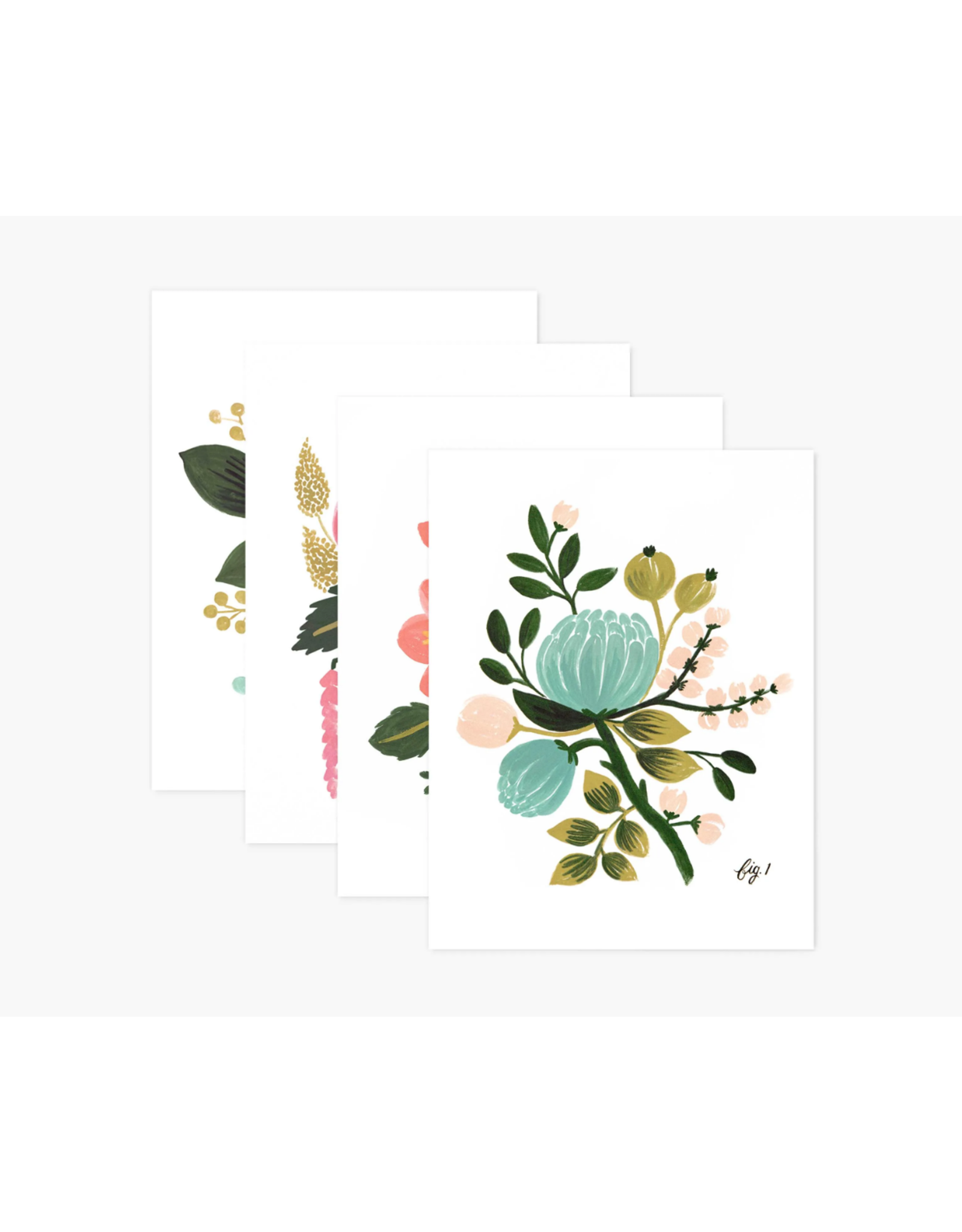 Assorted Botanical Cards, boxed set