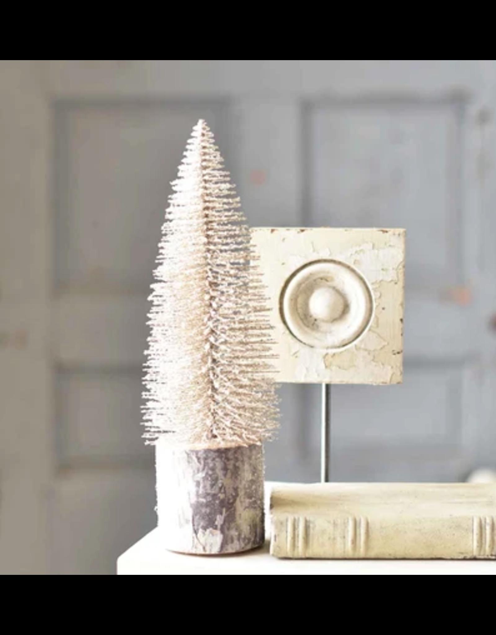 "Snowy Foxtail Pine Tree, 12"""