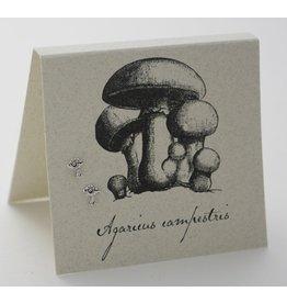 Natural History Mushroom Post E/R - ss