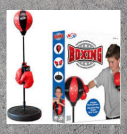 NATIONAL SPORTING GOODS BOXING SET FOSTER ADOPT