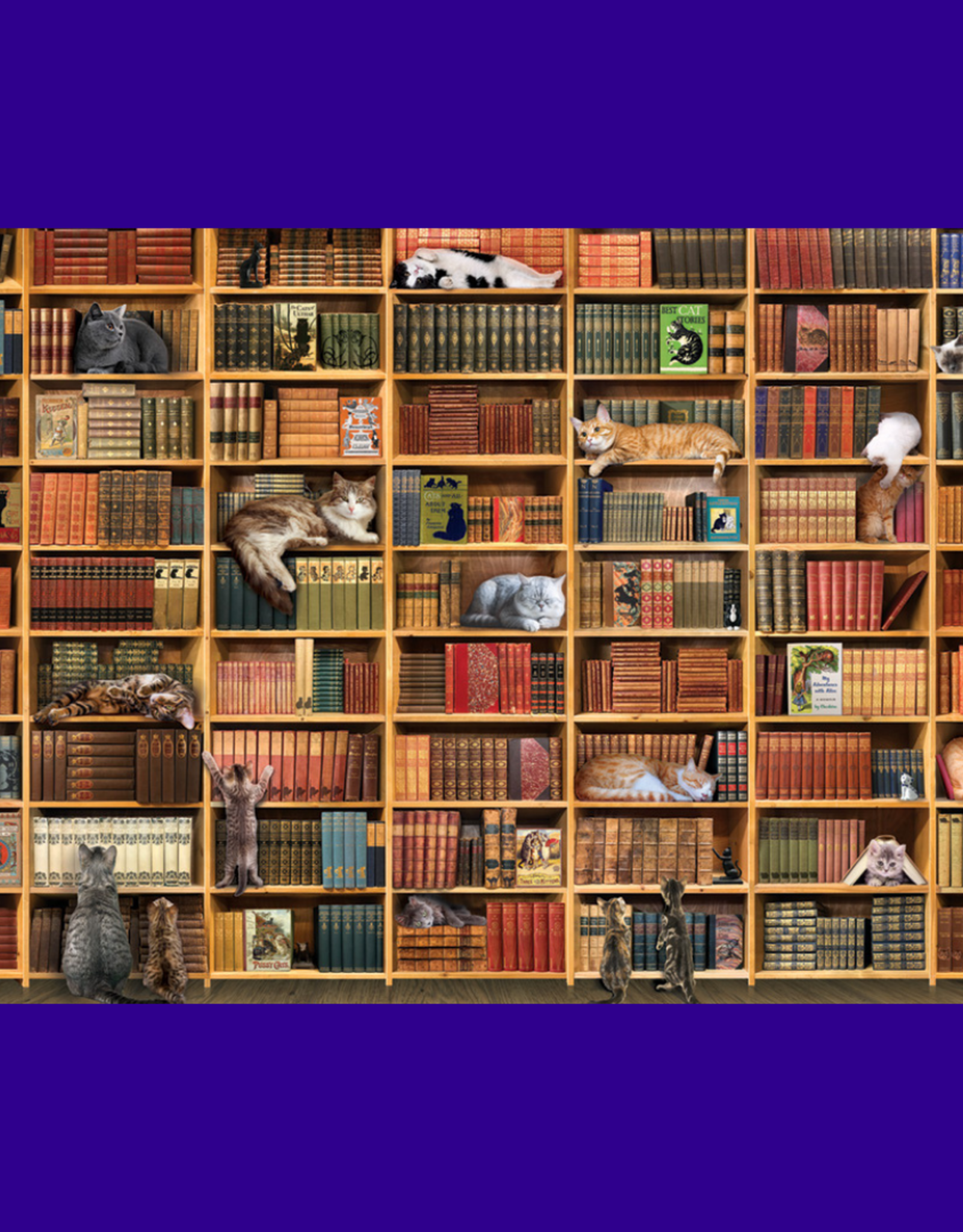THE CAT LIBRARY PUZZLE