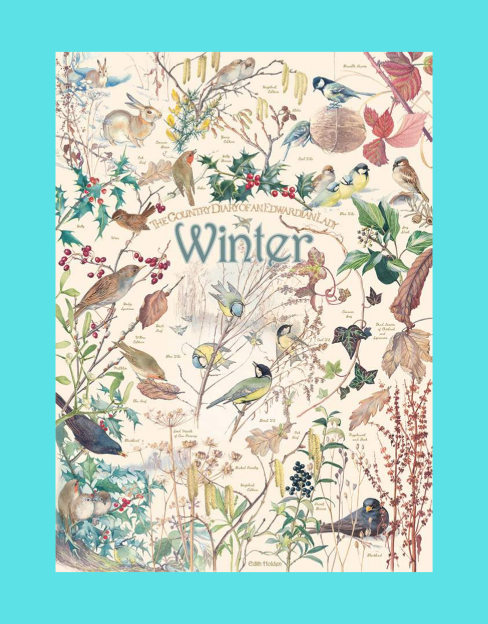 COUNTRY DIARY WINTER PUZZLE