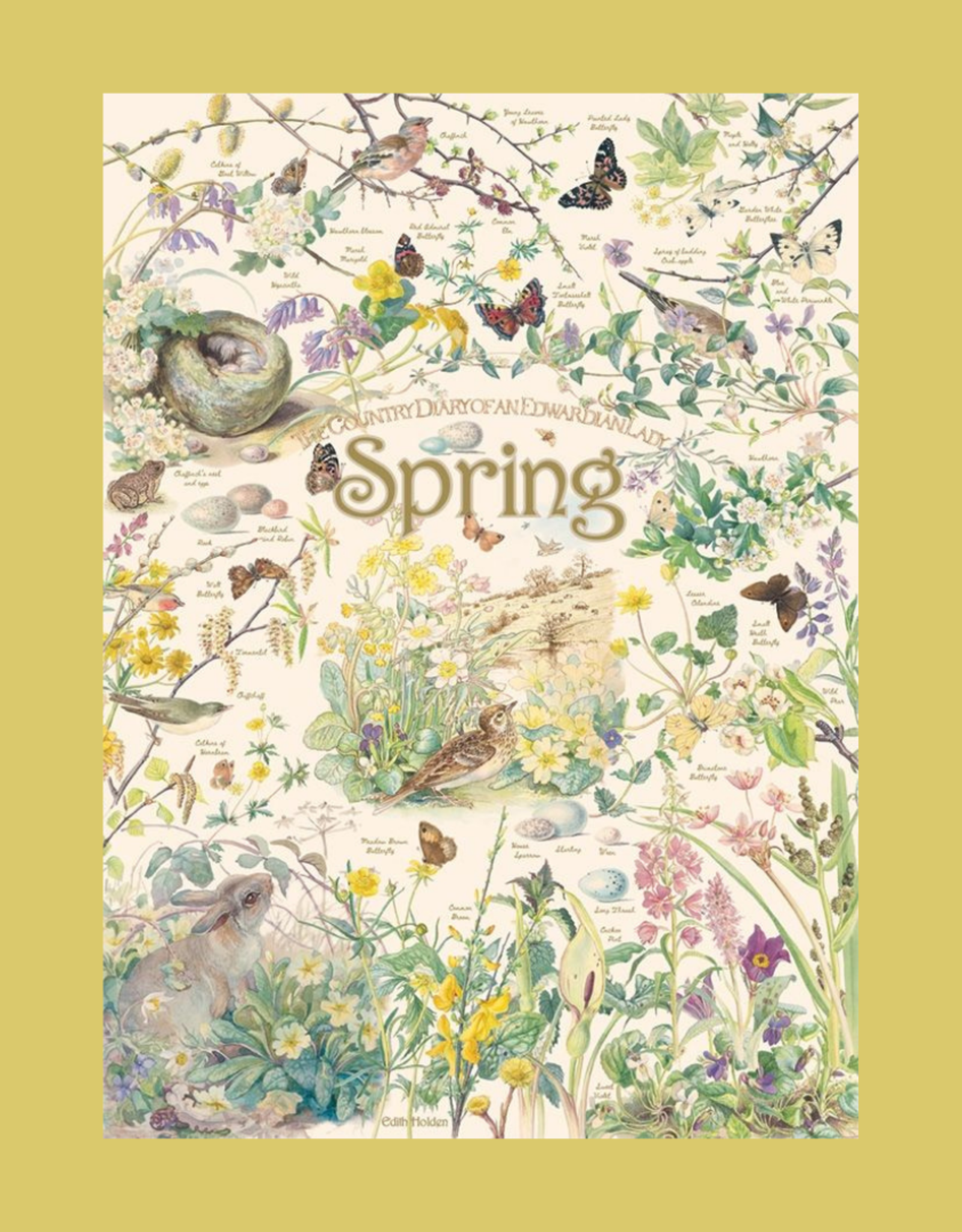 COUNTRY DIARY SPRING PUZZLE