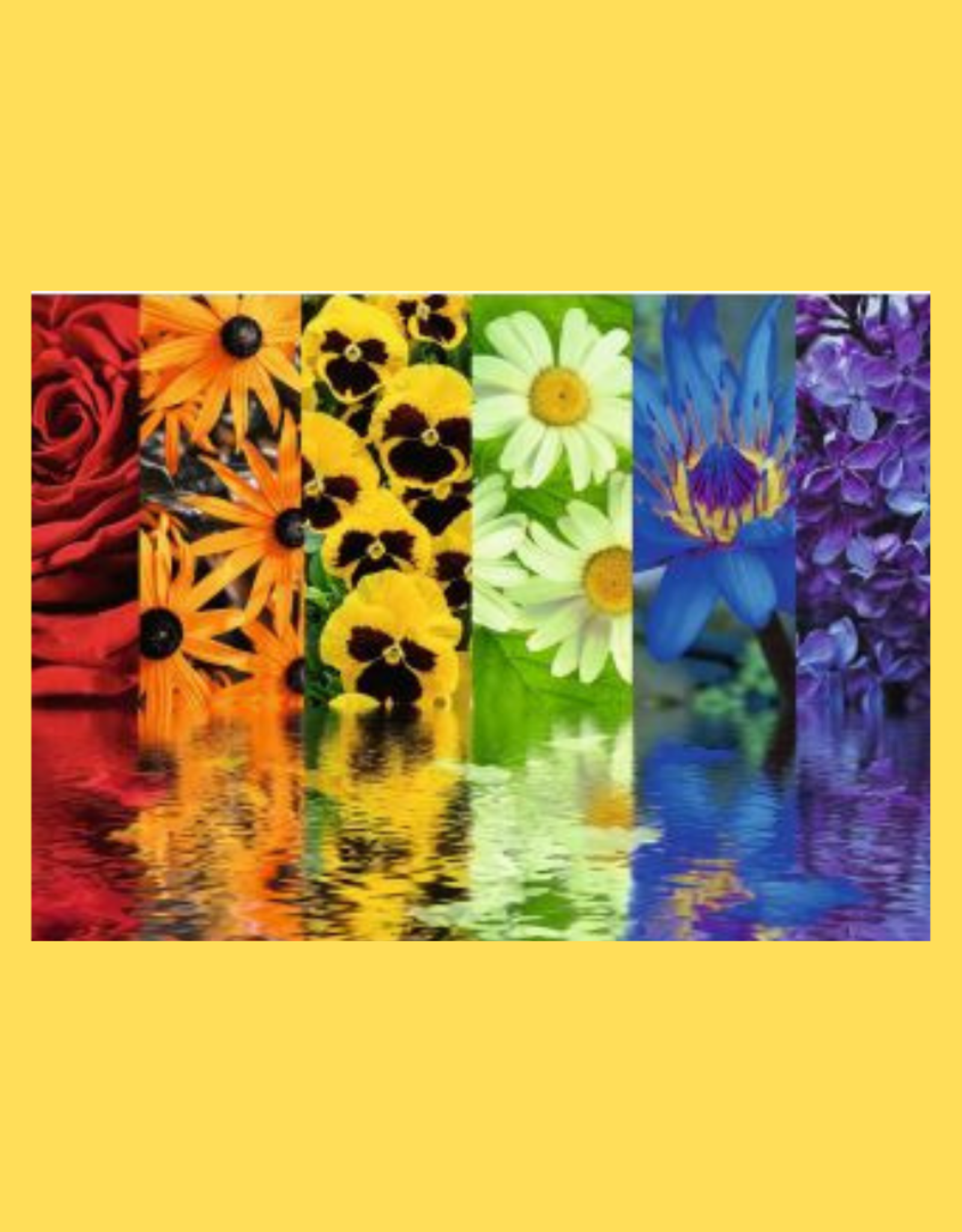 PUZZLE 500PC RAVENSBURGER FLORAL REFLECTIONS