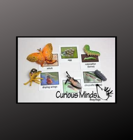 INSECT LORE Life Cycle Figurines 24 Pc Set with Case