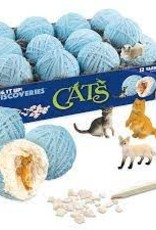 MINDWARE Dig It Up!: Discoveries: Cats