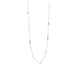 Rose Gold Accented Long Delicate Necklace