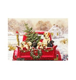 Peter Pauper Bringing Home the Tree Deluxe Boxed Holiday Cards