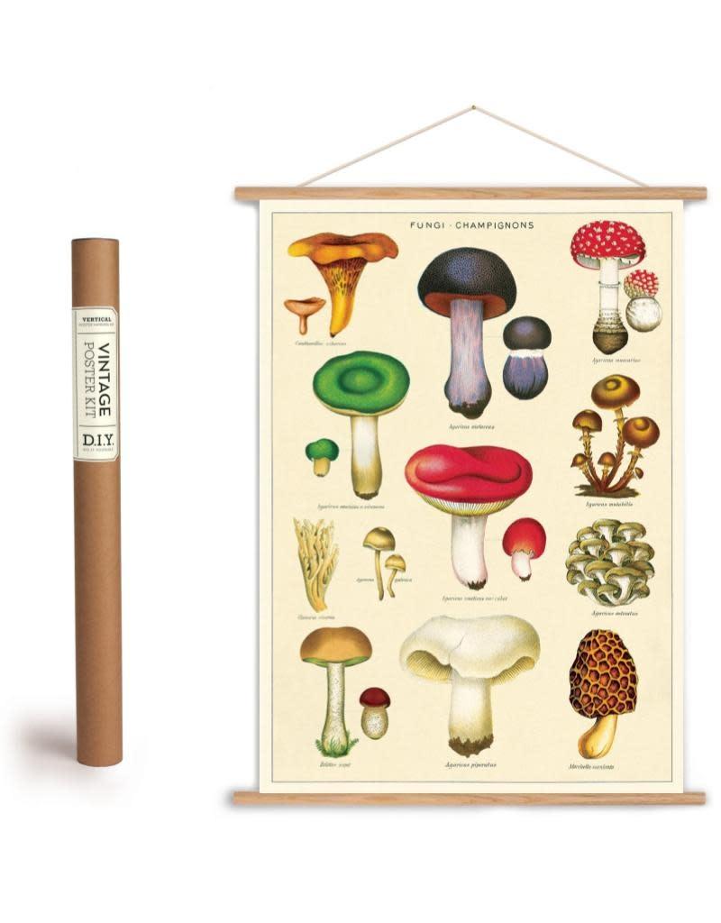 Cavallini Vintage Poster Kit Mushrooms 2