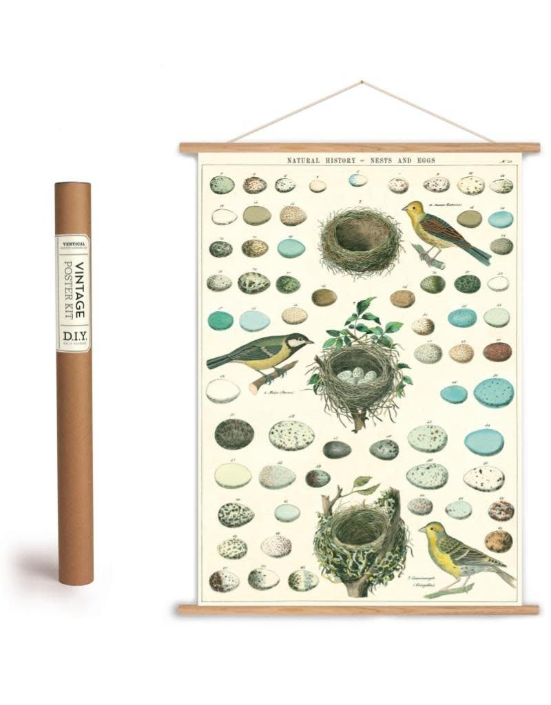 Cavallini Vintage Poster Kit Nesteggs