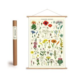 Cavallini Vintage Poster Kit Wildflowers