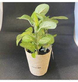Pomp & Prose Mini Leafy Faux Pot PPT