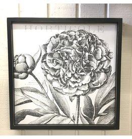 Pomp & Prose Floral box ppt