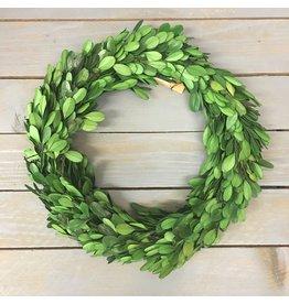 """Pomp & Prose 10"""" Faux Boxwood Wreath PPT"""