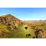 Wine Tasting 9/28/21 - Wines of Napa Valley