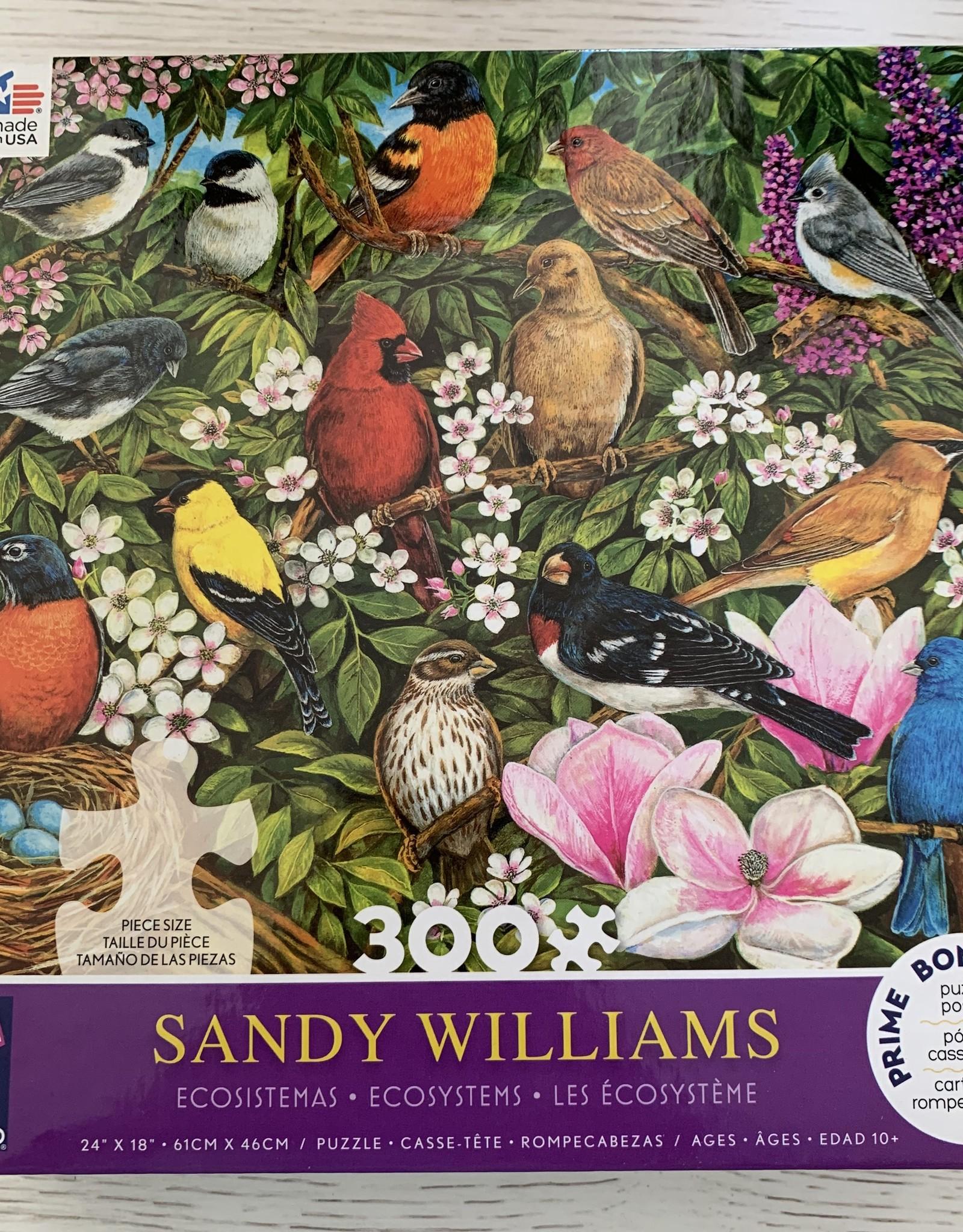 CEACO 300 pc Sandy Williams Bird Puzzle