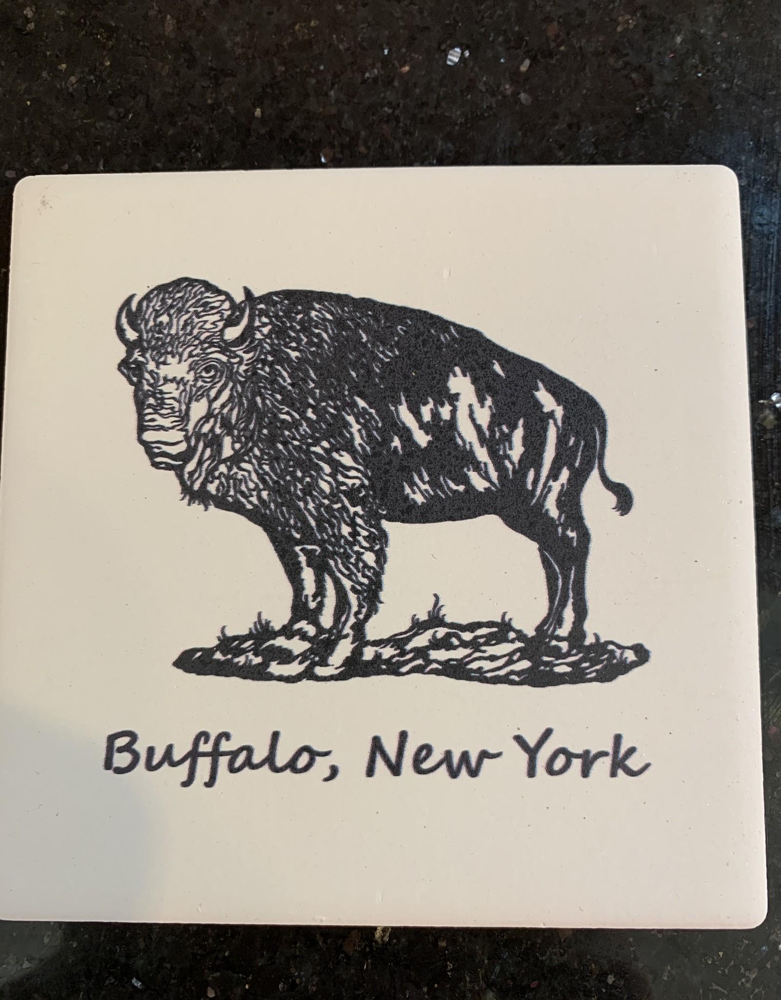 COLORS OF LIFE BUFFALO, NY COASTER
