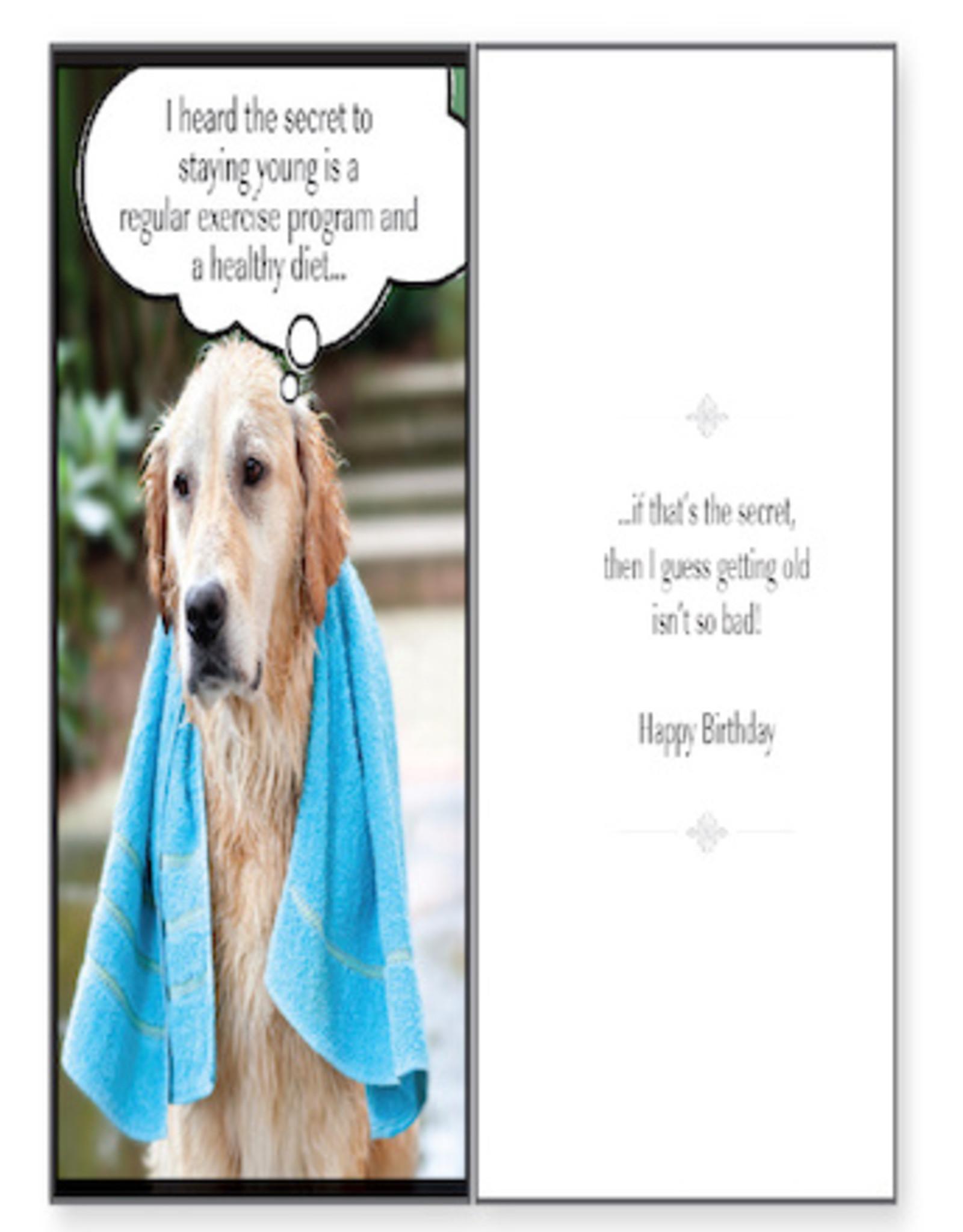 DOG SPEAK Regular Exercise Dog Birthday Card