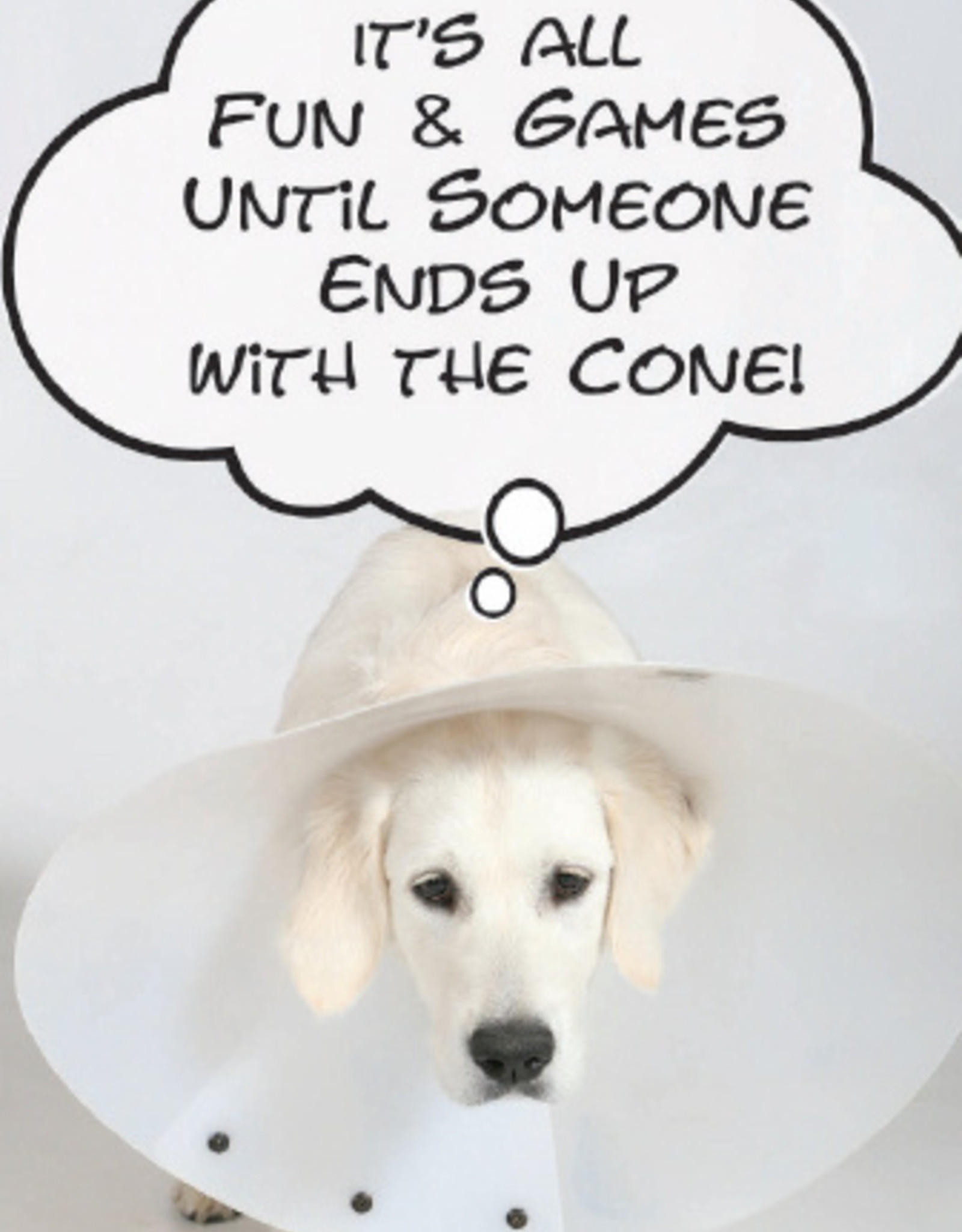 DOG SPEAK Dog In A Cone Birthday Card